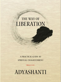Review: <i>The Way of Liberation</i> by Adyashanti